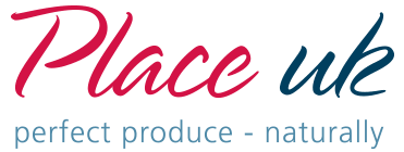 Place UK Logo